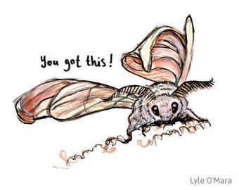 You Got This Silk Moth