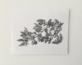 Botanical - Arbutus Branches (Pen & Ink, Original Art)