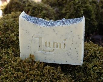 Lemon-lime soap all natural