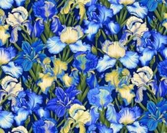 Botanical III by Henry Glass