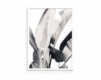 Black and White Art, Leaf Print, Wall Art, Black and White, Poster Decor, Tropical Wall Art, Botanical Decor, Plant Art, Plant Decor, Leaves