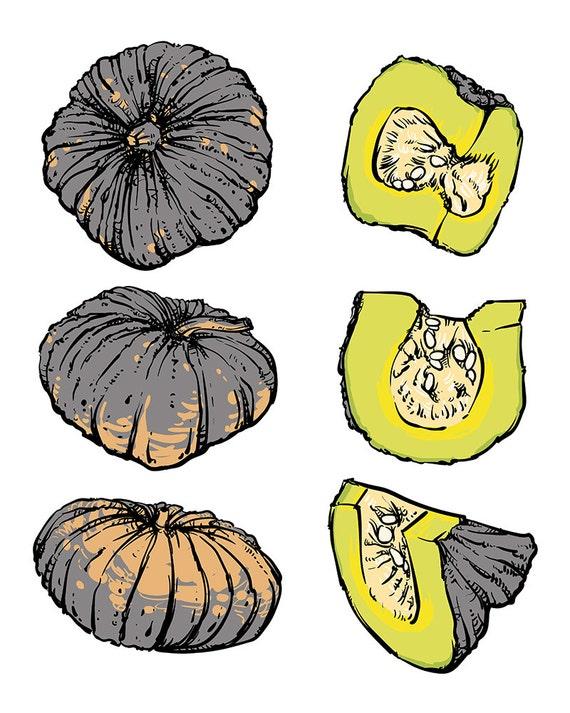 Off sale vector hand drawn sketch pumpkin on a white