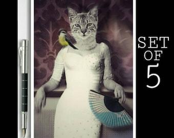 Cat Notecards | Funny Cat Card | Cat Cards | Cat Birthday Card | Cat Lovers Card | Animal Card Set | Cat Art | Cat Stationary Set |Cat Print