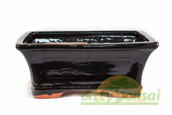 Black Glazed 10 Inch Bonsai Pot With Wire And Mesh To Cover