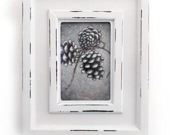 Pinecones framed illustration