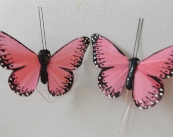 lifelike butterflies set of two for various uses