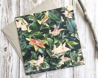 Wooden Cards, Nature Cards, Botanical Cards, Nature Print, Botanical Print, Wall Decor, Wood Cards, Wood Print, Wood Art