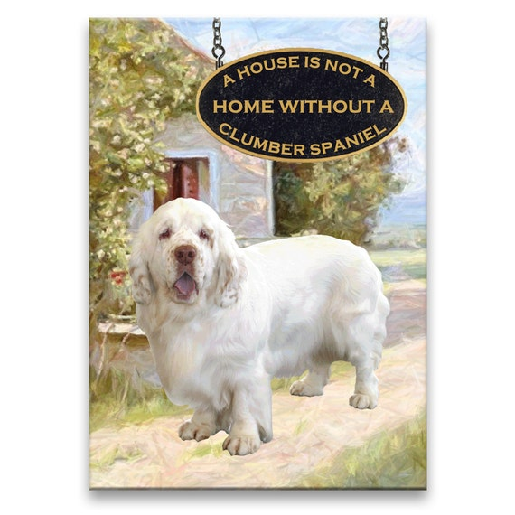 Clunber Spaniel a House is Not a Home Fridge Magnet