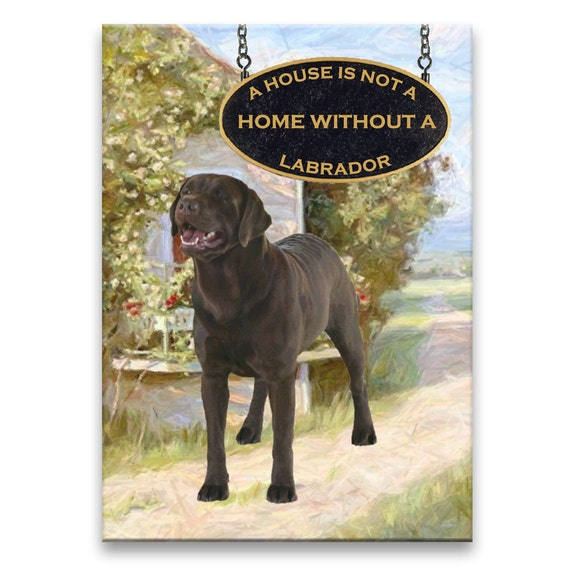 Labrador Retriever a House is Not a Home Fridge Magnet (Chocolate)