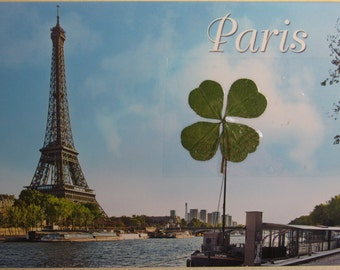 Postcard from Paris with 2 REAL 4-leaf clover four leaf clovers