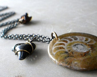ammonite fossil necklace, long ammonite necklace on gunmetal chain, shark tooth necklace, talisman necklace