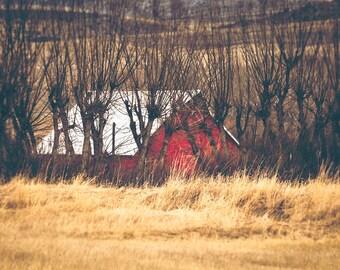 "landscape, barn, red barn, farmhouse decor, rustic wall art, large art, large wall art, canvas art, wall art canvas, art - ""In the Willows"""