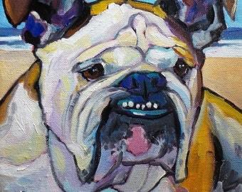 12x12 or 11x14 Oil on Canvas Pet Portrait by Maine Artist Elizabeth Fraser