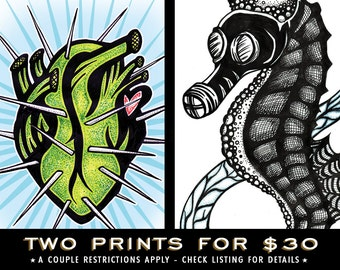 TWO PRINTS for 30 / Choice of Print set!