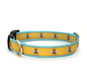 "1"" Oh Honey buckle or martingale collar"