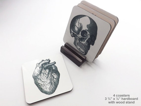 Anatomy 3.75 inch hardboard Coasters cork back graduation gift him skull anatomical heart brain halloween medical goth geekery doctor office