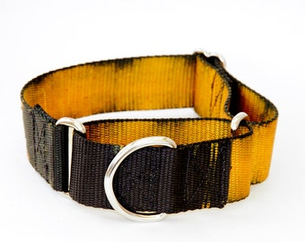 "Dog Collar - ""Black Hole Sun""  ( Yellow and Black Custom Hand Dyed ) 5/8"" - 2"" Widths - Martingale, Buckle"