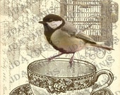 ON SALE French Script Bird on Teacup Collage - French Postcard Tag Instant Download - FrA148