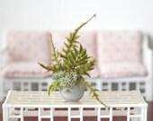 1:6 Scale Miniature Silver Round Vase Plant Fern Moss Arrangement Blythe Momoko Pullip Barbie Fashion Royalty Doll House