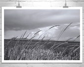 Nature Photography, Cloud Art, Wetlands, Landscape Art, Windy, Sky Art, Black and White, Modoc, Klamath, Siskiyou, Fine Art Photography
