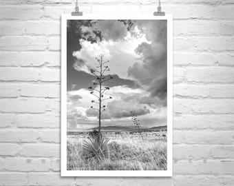 Vertical Wall Art, Tucson Monsoon, Arizona Art, Black and White, Landscape Photo, Storm Photography, Stormy Sky, Sierra Vista, Huachuca
