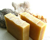 Green Tea Shampoo Bar - Aloe Vegan Shampoo Bar - limited edition