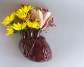 Human Heart Wall Vase -anatomicl heart wall vase in burgundy/brown, holds water