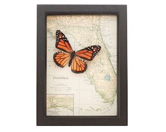 Vintage Map of Florida with Monarch Butterfly