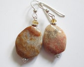 Coral Fossil earrings, agate, coral fossil, sterling and stone, citrine