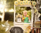 Digital Background, Photo Overlays, Background Replacement, Photography Backgrounds & Backdrops, Children's Lemonade Stand Scene