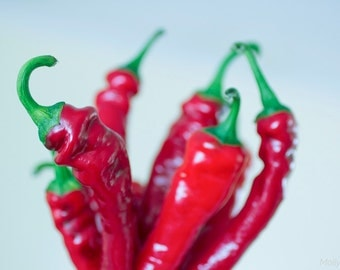 Food Photography, Red Hot Cayenne Pepper Photo, Kitchen Art Photo, Funky Whimsical Art Print, Bright Red Green,