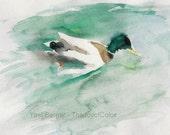 Duck Art print, Duck in the Pond, watercolor print, birds art, teal, green, nursery decor, calm landscape, pond print, duck art