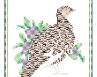 Alaska State Bird, Flower and Motto Cross Stitch Pattern PDF