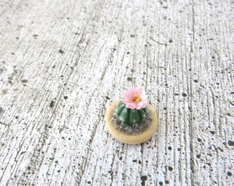 Cactus with pink flower in wooden bowl in 1:12 scale