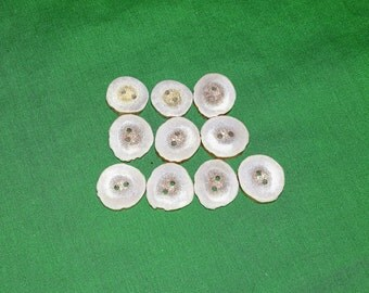 10 Antler Buttons lot 137
