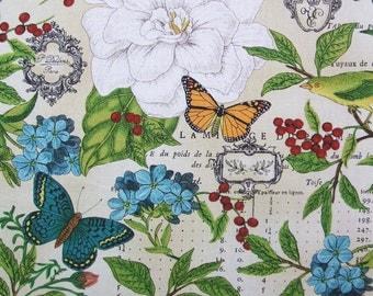 Modern Curiousity Allover Bird Butterfly Flower Timeless Treasures Fabric Yard