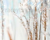 White Blue Wall Art, Nature Photography, Winter, Beach House Decor, Shabby Chic, Silver, Gold