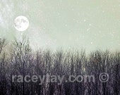 Full Moon Print, Birch Trees, White, Gray, Pagan, Nature Photography, Neutral, Winter, Rustic Decor