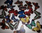 RESERVED for truejuls, 20 Medium, wooden, Butterfly Brooch, Choose style, butterfly, by NewellsJewels on etsy