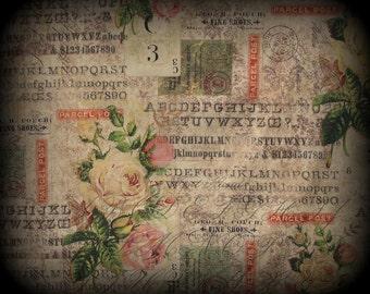 Tim Holtz Wallflower, Tim Holtz Fabric, Tim Holtz Rose Parcel, Half Yard, Pink Yellow Cream,Scrapbook Fabric, Eclectic Elements, Cotton, Coa