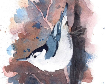 Nuthatch Watercolor Painting - Fine Art Archival Print- Signed Giclée - Limited Edition Bird Art by Laura D. Poss