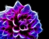 "Fractal - Fractal Art -  Flower Photography - Photography -  Home Decor - Purple - Surreal - 8 X 10"" Prints - Purple Fractal Dahlia2"