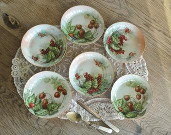 6 Beautiful Vintage Hand Painted Porcelain Berry Bowls