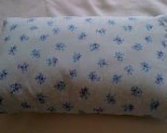 Lovely Pale Blue Cushion