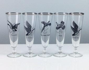 Vintage Wild Bird Pilsner Glasses, Set of Five, Wild Game, Hunting Cabin Bar, Fathers Day Gift, Guy Housewarming, Man Gift, Vintage Barware