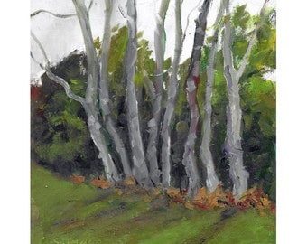 Original expressionistic landscape oil painting 8x10 Grove of trees