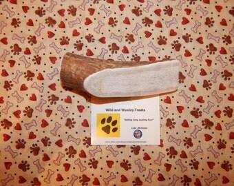 "Organic XL Elk Antler Dog Chew Split ""Made in Montana"" (Lot C2)"