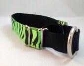 Lime Green Martingale Dog Collar