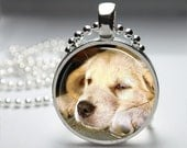 Dog Puppy Yellow Lab Round Pendant Necklace with Silver Ball or Snake Chain Necklace or Key Ring