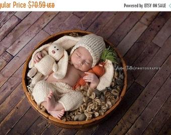 Newborn Bunny set, baby bunny